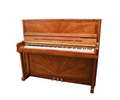 投资进口钢琴专卖的市场前景如何
