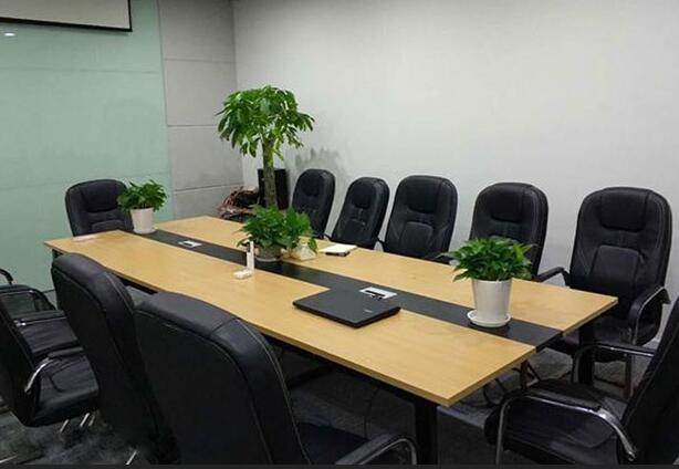 办公楼植物租赁比企业自养植物好在哪里