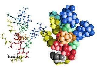 微生态制剂厂家吸引顾客的关键是什么