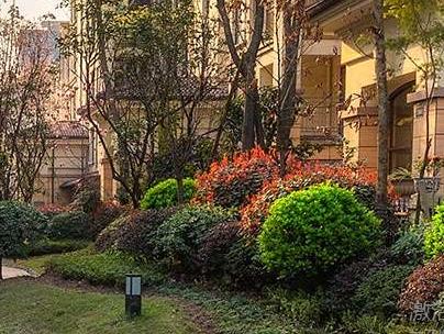 上海别墅花园设计要点是什么