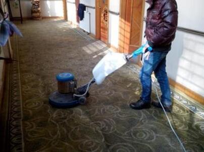 上海办公室地毯清洗专家揭秘:羊毛地毯易发霉如何处理