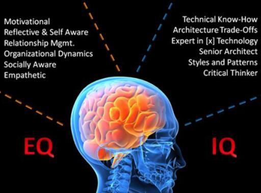 脑开发机构为什么可靠