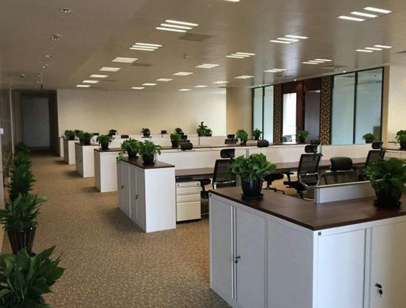 哪些地方会聘用上海办公室日常保洁