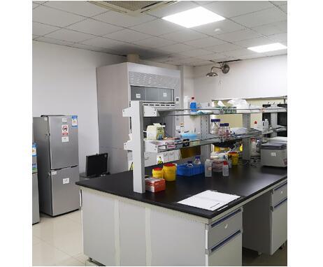 上海室内空气治理的主要服务内容都有哪些