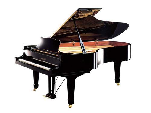 选择进口钢琴品牌应该具备哪些条件
