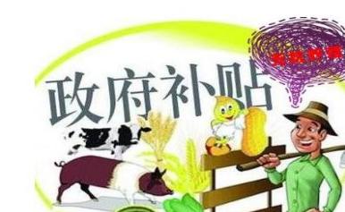 深圳创业补贴申请流程有哪些
