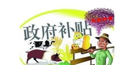 深圳创业补贴代办机构有哪些保障