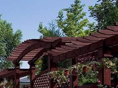 别墅绿化养护的技术要点是什么