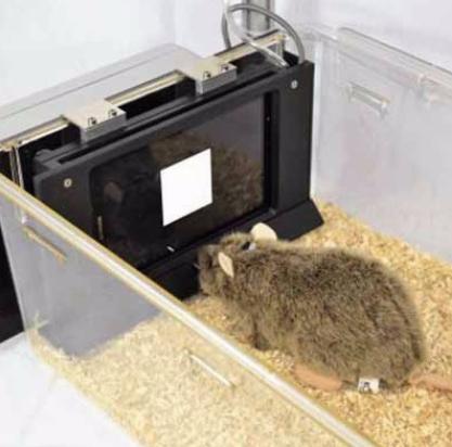 动物行为学软件 2.png