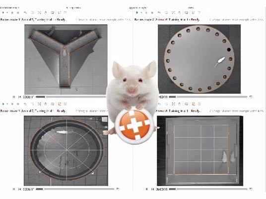使用动物振动切片机时有哪些需要注意的事情?.jpg