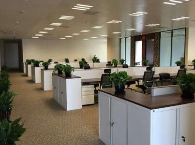 上海办公室日常保洁 2.jpg