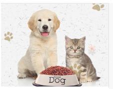 宠物在线咨询.png