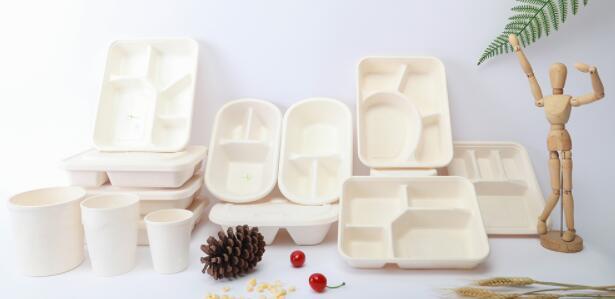 全降解餐盒1.jpg